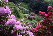 giardini e parchi d'italia