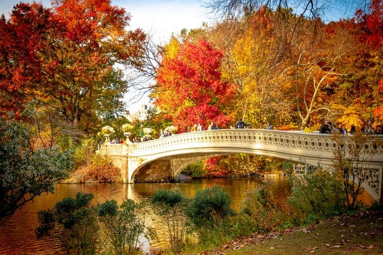 Passeggiando a piedi nudi a Central Park