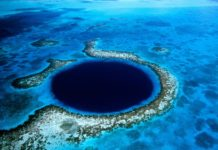 diving nel Great Blue Hole