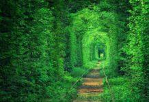 tunnel dell'amore