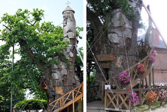 La Chene Chapelle Treehouse