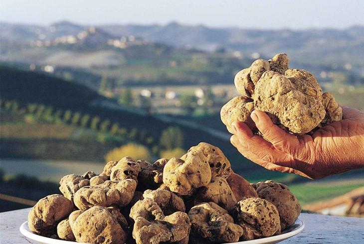Piemonte, una regione d'eccellenze eno-gastronomiche nel paesaggio Unesco