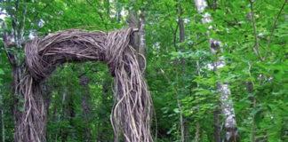 opera bosco