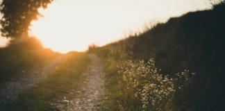 Cammini di pellegrinaggio