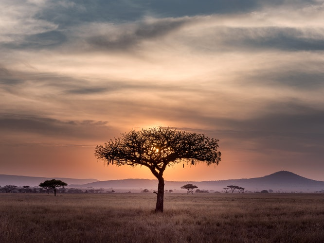 Viaggio in Africa: il mio viaggio tra i sapori del continente