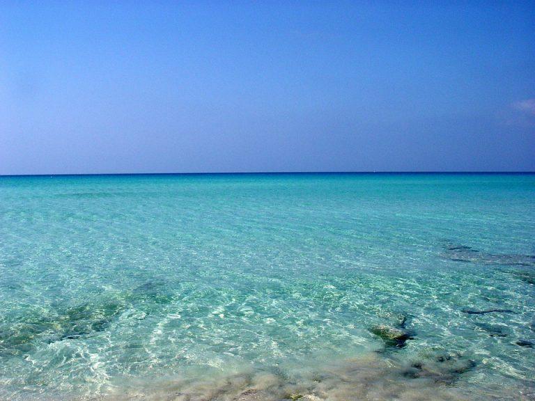 Formentera, la magia in un'isola è l'articolo più letto della settimana. Scopri la Top 5!