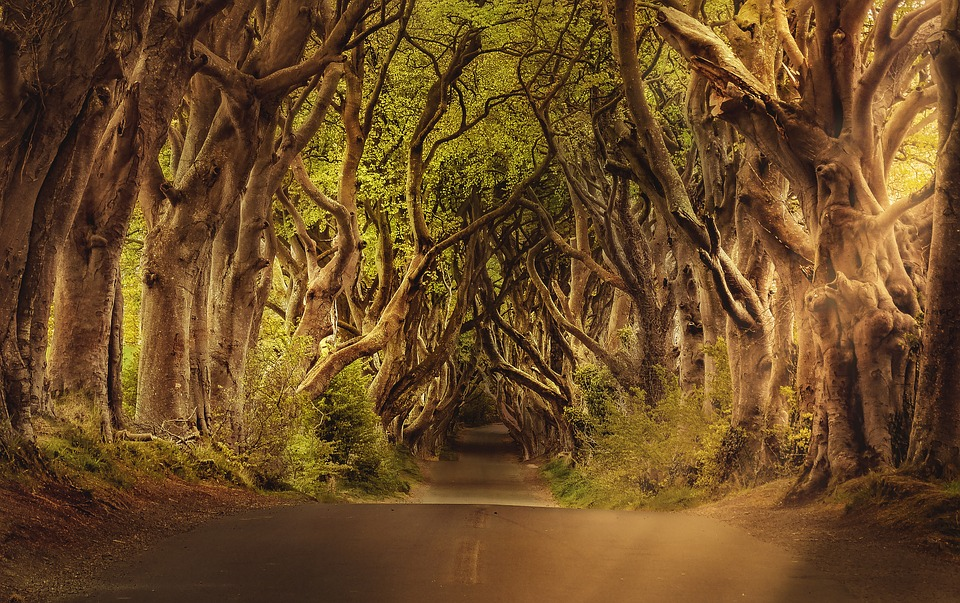 location di Game of thrones