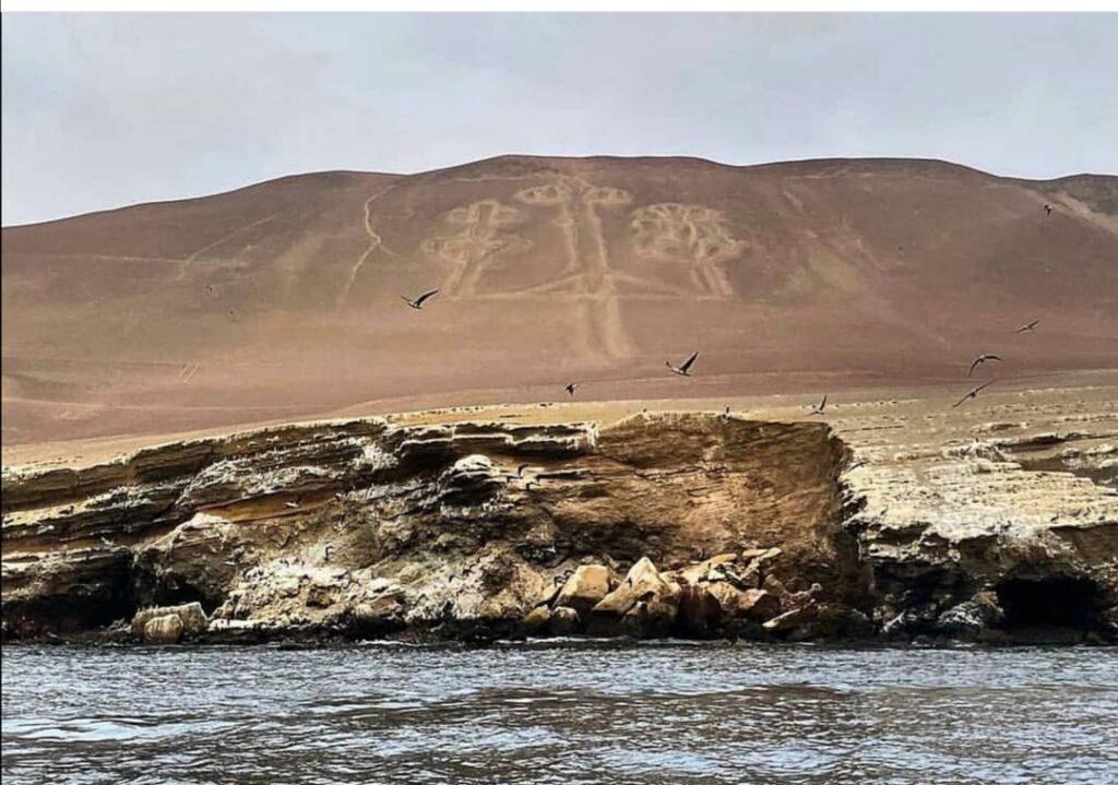 Viaggio in Perù: Albero Paracas - Foto di jessica di Renzo